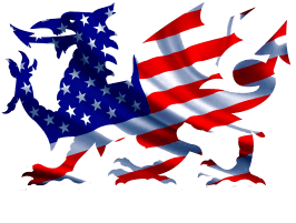 American Car Weddings Footer Logo
